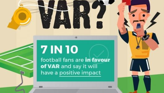 VAR survey results